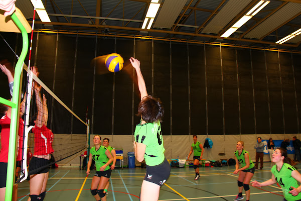 Volare A dames volleybalteam Roeselare