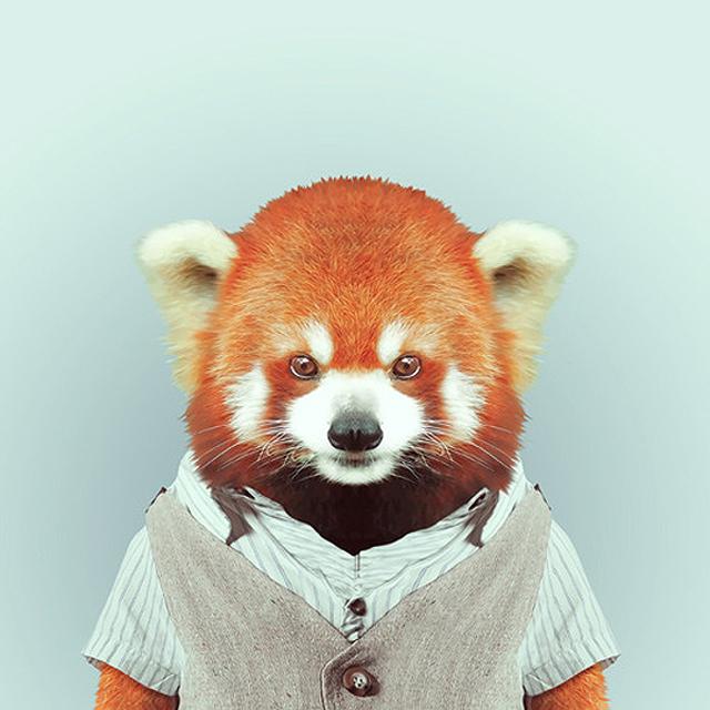 *Zoo Portraits動物時尚秀:正經八百時裝篇! 7