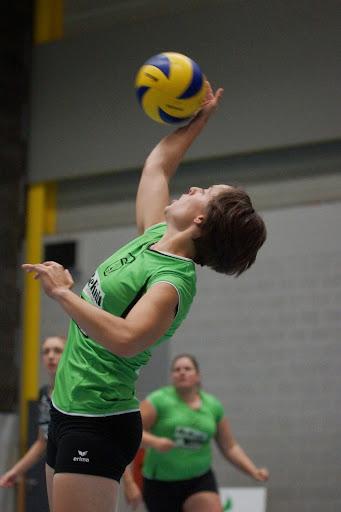 volare volleybal