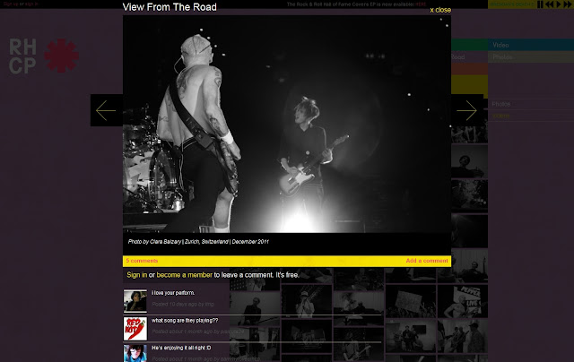 *色彩變化豐富的搖滾樂團網站|Red Hot Chili Peppers Web Site 6