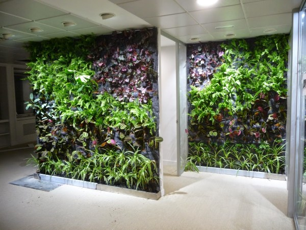 Jardínes Verticales de interior en oficinas de Madrid