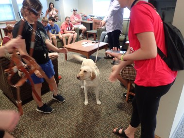 SOAR Participants learn what it is like to use and live with a guide dog.