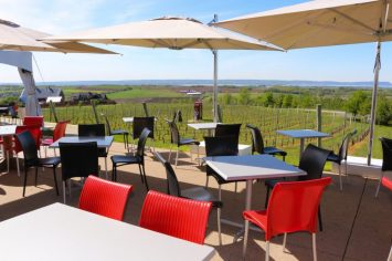 La terrasse de Luckett Vineyards 2