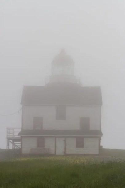 phare de Ferryland