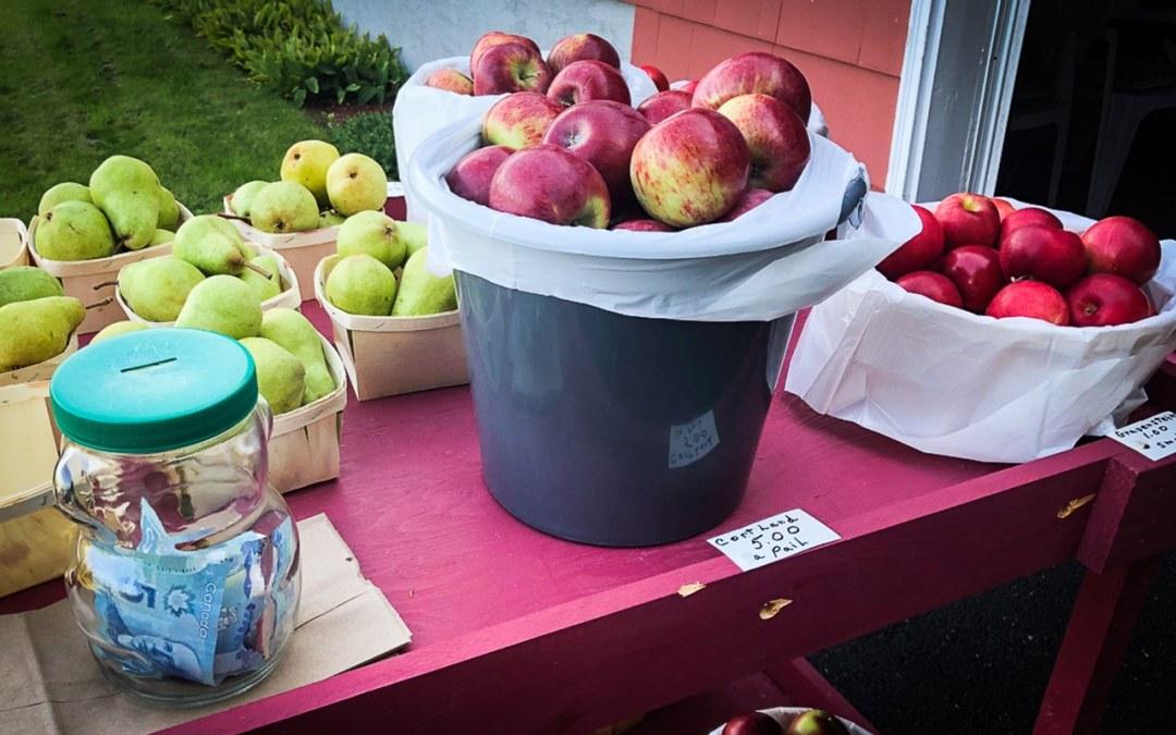 vallée d'annapolis pommes et poires