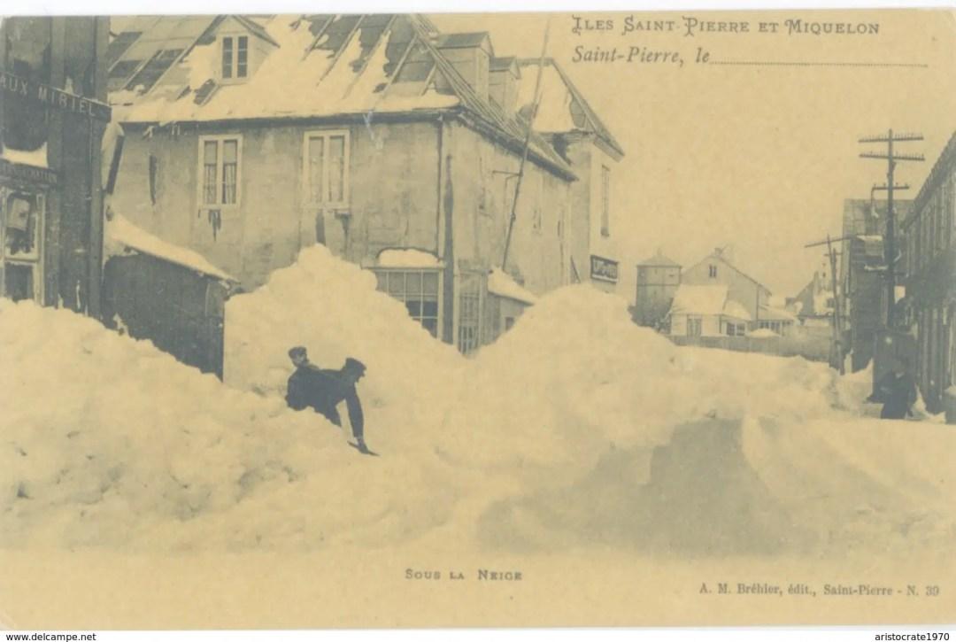 photos hiver caniques et boules de romequin SAint-Pierre et Miquelon