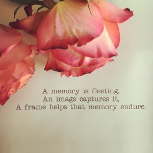 "An up close image of two soft pink roses placed above the words, ""A memory is fleeting, an image captures it, a frame helps that memory endure."""
