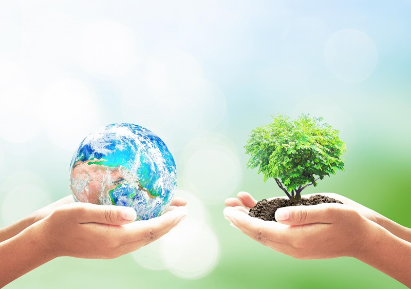 on-the-road-to-a-greener-recovery-four-steps-to-keep-ourselves-and-the-planet-healthy