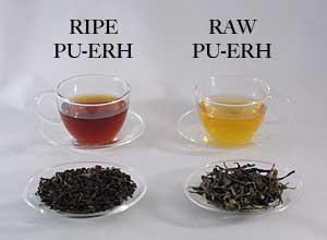 Ripe vs Raw Pu'er