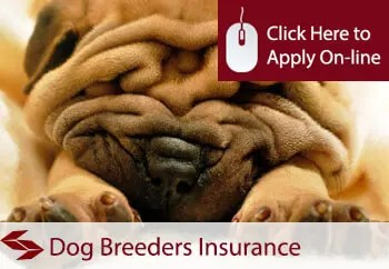 dog breeders public liability insurance
