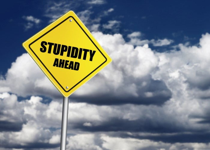 Stupidity insurance – why your business needs it?