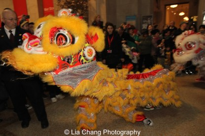 Chinese Center on Long Island Lion Troupe at the Metropolitan Museum of Art's annual Lunar New Year festival on February 6, 2016 in New York. Photo by Lia Chang