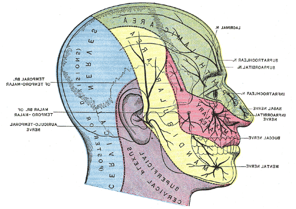 What is Trigeminal Neuralgia and what causes it?