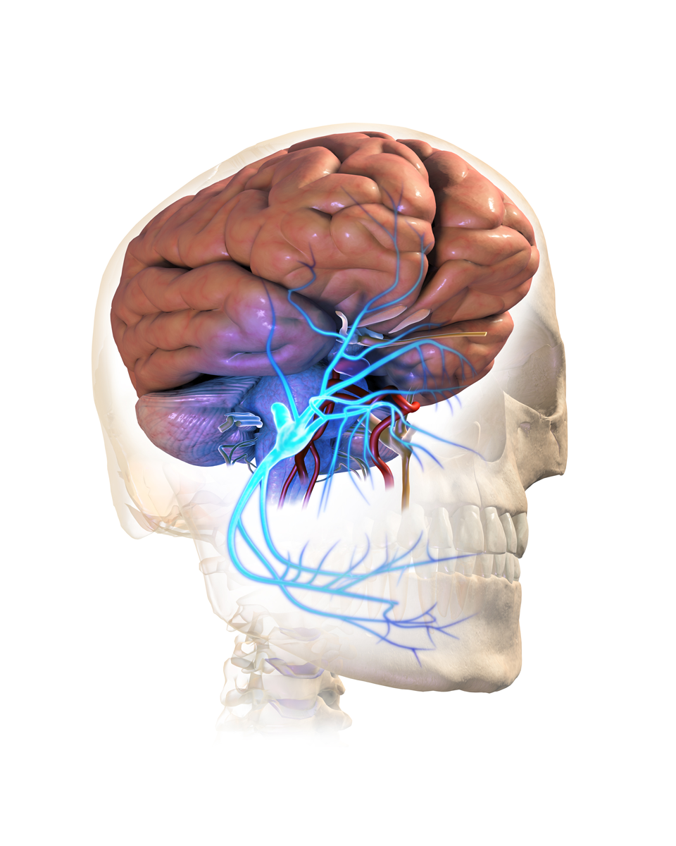 What are my treatment options for Trigeminal Neuralgia?