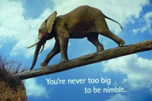 Be Nimble, But Be Wise