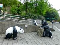 outside the Panda house