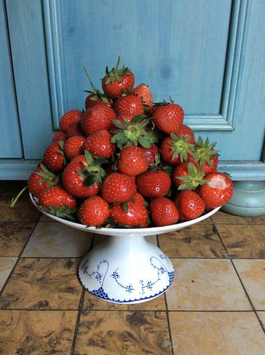 草莓Fraises