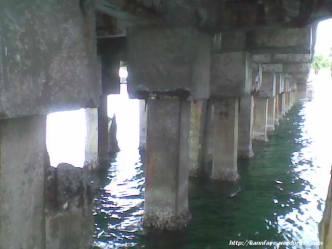 Underside of the South Dock