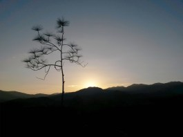 Must go to Pai Canyon for sunset!