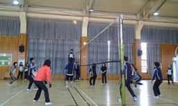 korea school volleyball