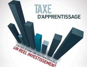 taxe d apprentissage 2013 300x233 Télécharger le formulaire pour la taxe dapprentissage 2013
