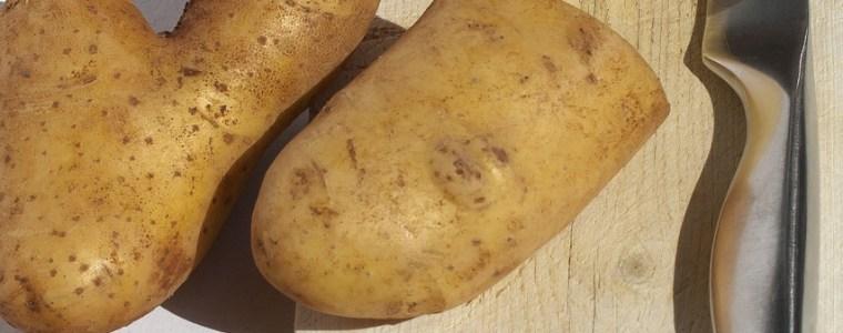 potato, cut open, knife-3559493.jpg