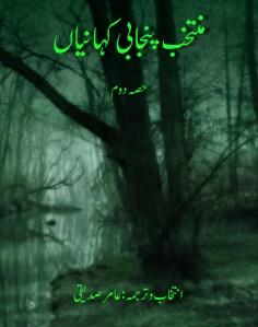 منتخب پنجابی کہانیاں حصہ دوم  ۔۔۔ انتخاب و ترجمہ: عامر صدیقی