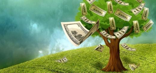 Chicago liquor lawyer money from trees free grant program
