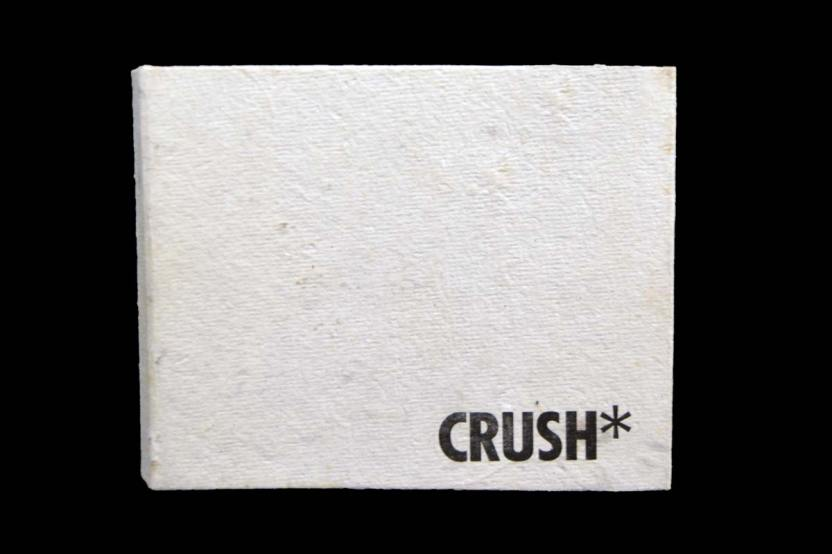 A case bound / accordion hybrid, Crush* is a study of the plays on language I used to conceal my ardent feelings for another woman before I came out.