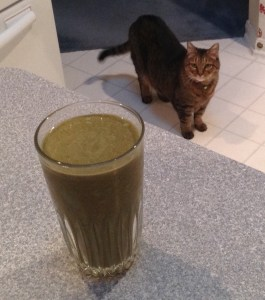 Green smoothie and cat