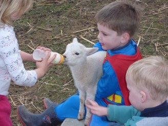 The boys feeding the new lambs at our favourite farm stay. This was the Superman phase clearly!