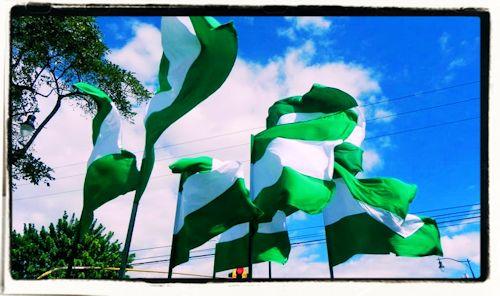 Manifiesto de Fuerza Verde