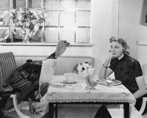 ダチョウと食卓を囲む女性