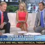 Fox News Presenter Asks Why We're 'Not Clearing the Water of Sharks' To Keep Swimmers Safe