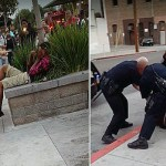 9 Cops Forced to Wrestle Amazingly Strong Jaywalker Teen
