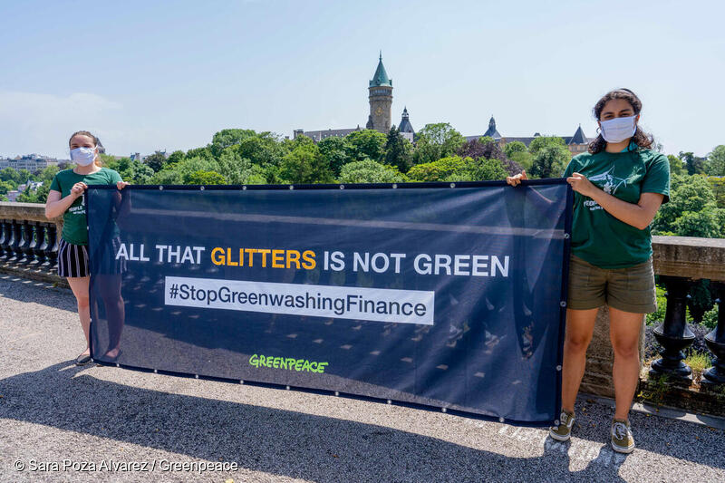 Green(washing) finance: sustainability funds fail to live up to their name
