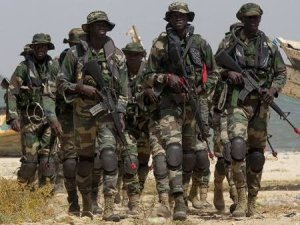Muteness of Ijaw political leaders, traditional rulers reasons for our incessant military invasions – IPDI | The Liberator