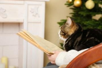 Reading Goblin Court cat on lap