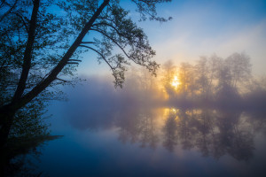 morning fog on a river : atmosphere