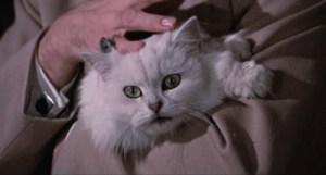 Blofeld's cat being stroked by a classic villain