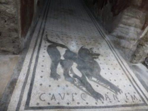 Pompeii, cave canem floor mosaic
