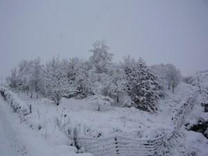 snow in spring in Yorkshire