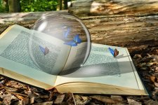 crystal ball with butterflies on open book