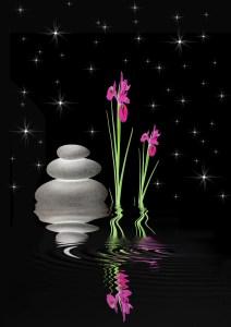 Zen calm - water, flowers, pottery