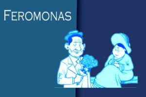 feromonas2