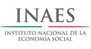 22-inaes
