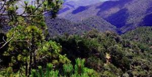 sierra-norte