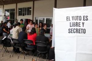 elecciones-diputados federales-voto- (10)