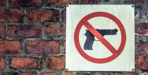 What will prevent mass shootings?