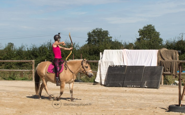 tir-arc-cheval